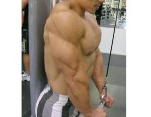 Melhores exercícios para tríceps