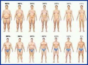 Perder gordura e manter a massa muscular