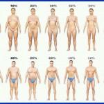 Algumas dicas para reduzir o percentual de gordura sem perder massa muscular