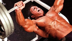 supino-treinos-academia-peito
