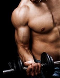 exercicio musculacao treinos academia