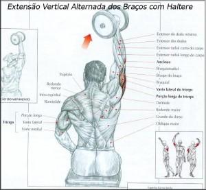 treino-triceps-01