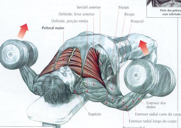 O que é possível fazer para aumentar um peito