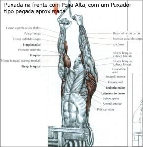exercicio-peito-2