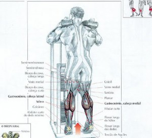 Treino para pernas