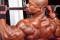 Treino básico de hipertrofia para as costas