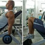 Super Treino de Bíceps