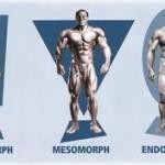 Os principais termos (jargões e termos técnicos) utilizados nos treinos de musculação e academia