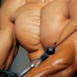 Treino básico de peitoral para hipertrofia