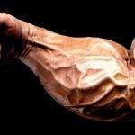 Treino de antebraço para hipertrofia